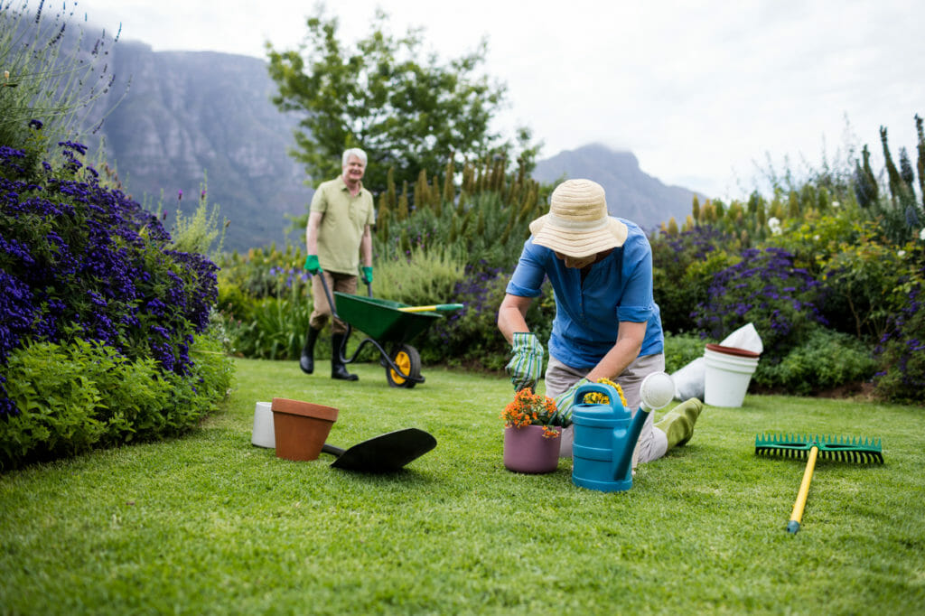 Senior woman planting flower while senior man standing with wheelbarrow in background